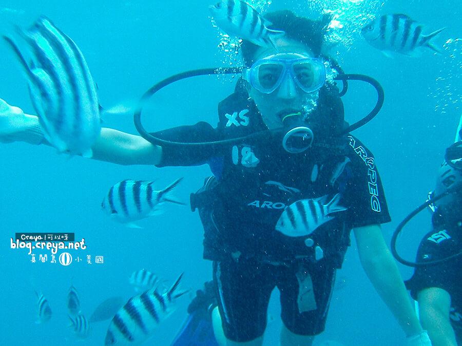 ▐ 真關島小美國▐ 關島潛水教我的事:「想獲得水中美照,請不要這樣跟我做!」